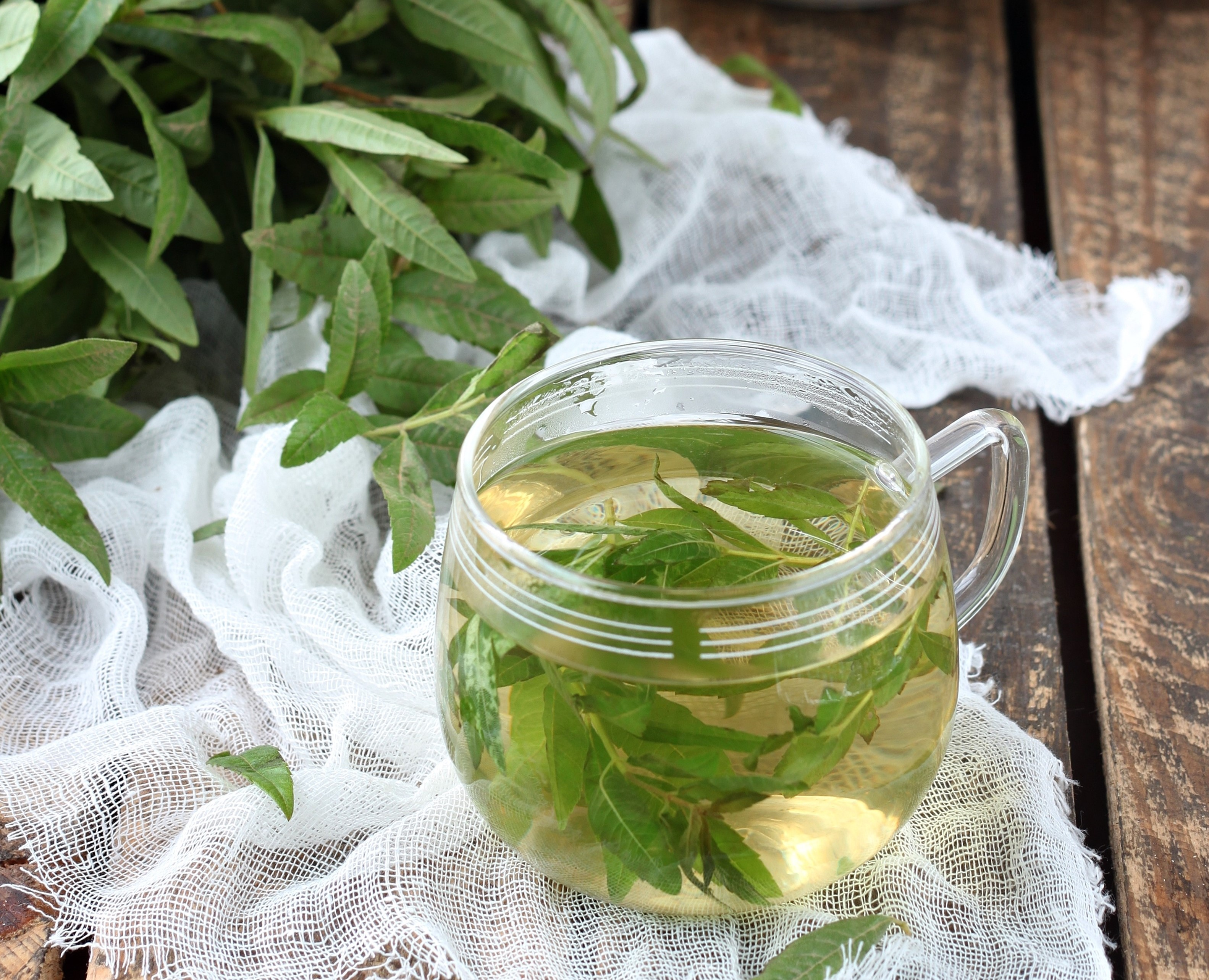 Lemon Verbena Tea for Anxiety